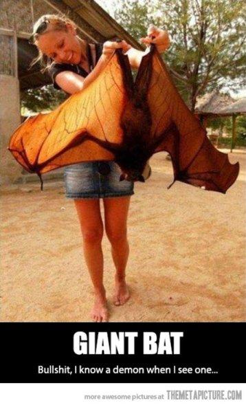 bat-demon