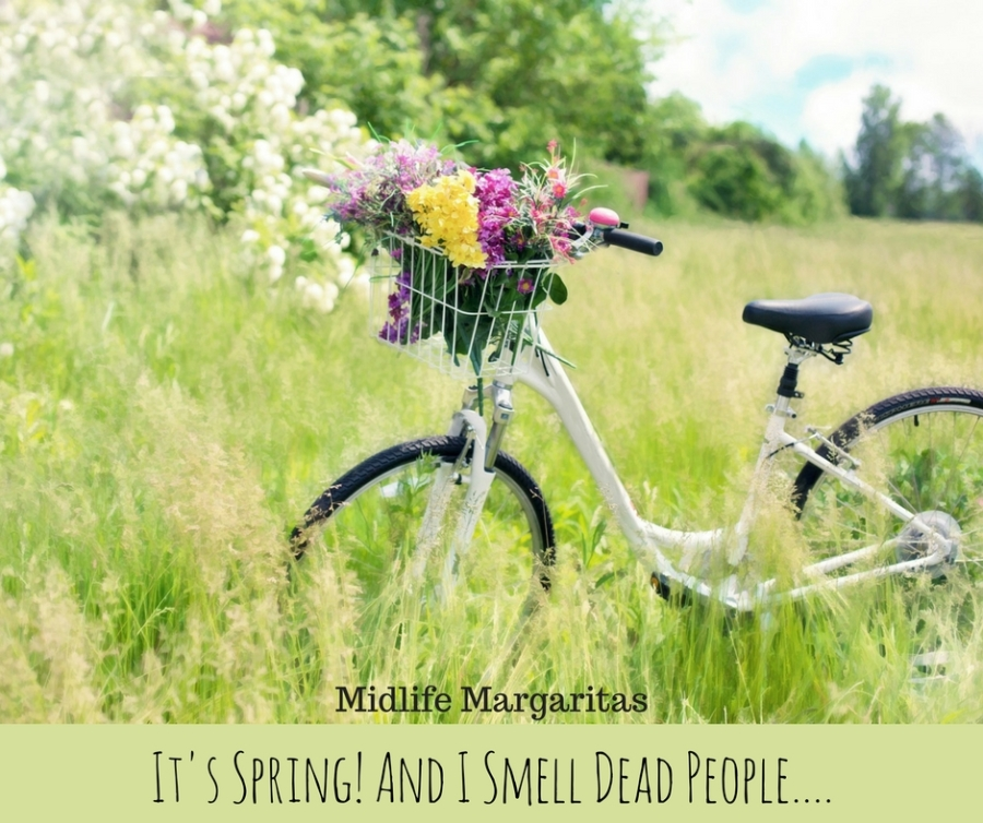 Ahh. Early Spring In the Carolinas And My Street Smells Like Dead Bodies.