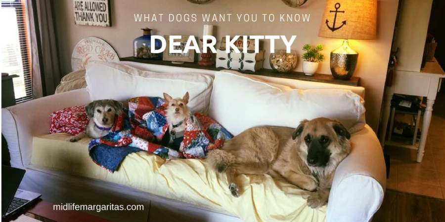 What Your Dog Wishes He/She Could Tell You…