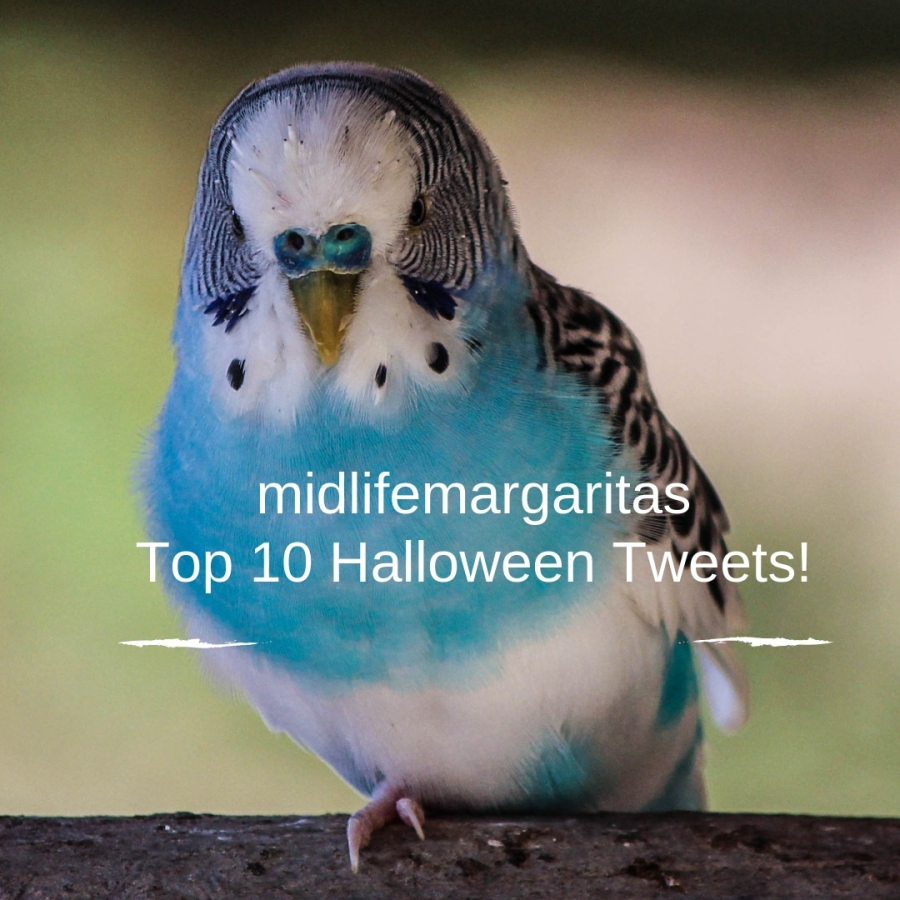 10 Funny Halloween Tweets for 2018