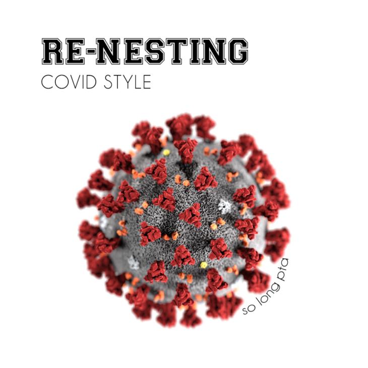 RENESTING-copy-1024x1024
